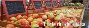 northeast ohio apples